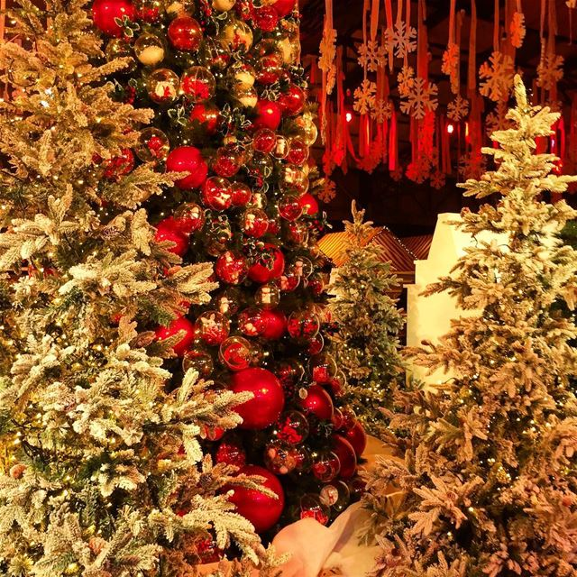 🎄🎅It's the Most Wonderful Time of the year...🎅 🎄❤️ christmastree ... (Beirut, Lebanon)