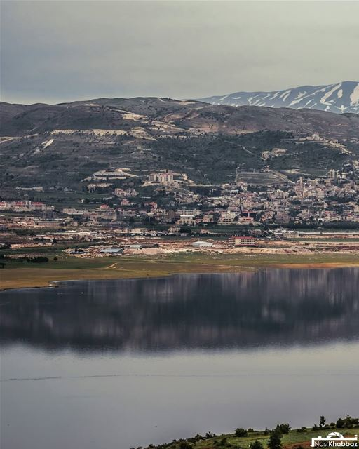 naturephotography  nature  naturelovers  lake  landscapephotography ... (Lake Qaraoun)