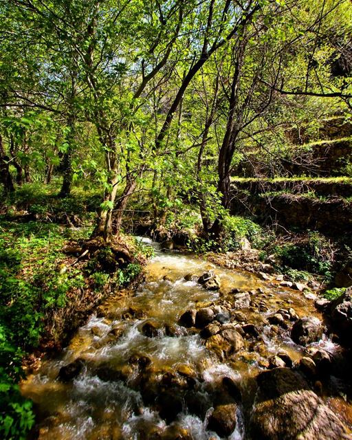 Flow like a river 🌍.... lebanon  livelovelebanon  livelovebeirut ... (Bcharreh, Liban-Nord, Lebanon)