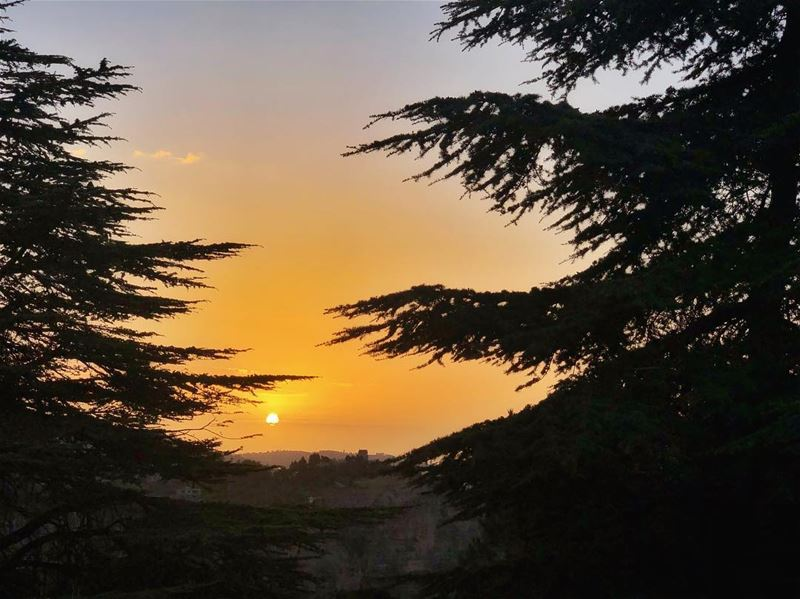 Do not pour your sunshine into someone who does not think of you as their... (Bcharreh, Liban-Nord, Lebanon)