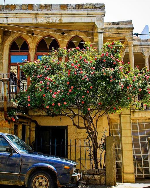 Feels like home 🌺..... livelovelebanon  livelovebeirut ... (Jezzîne, Al Janub, Lebanon)