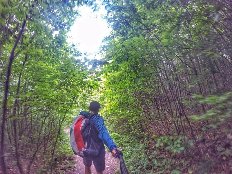 Into the Jungle... hiking  hikingtrail  hikeitout  outdoor  outdoorsman ...