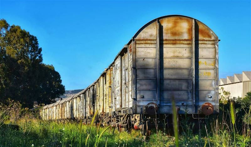 lebanon  beirut  photography  bluesky  train  rail  oldtrain  green ... (Shikka, Liban-Nord, Lebanon)