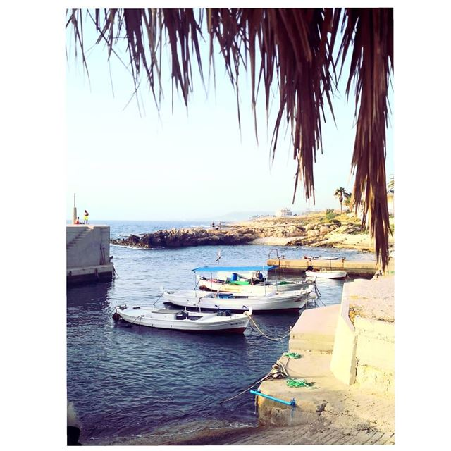 A simple life is a blessing 🐳🌊--- TakeMeTo  Batroun barbara  Lebanon... (Barbâra, Liban-Nord, Lebanon)