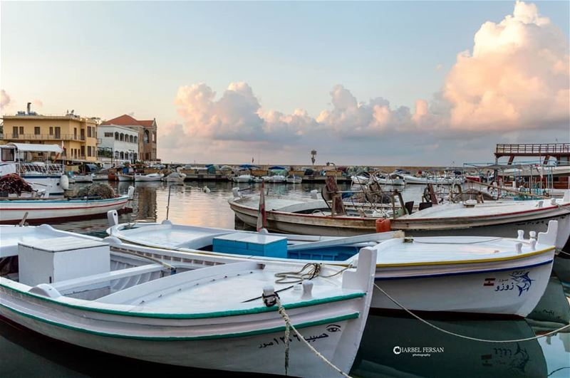Let's sail away ⛵www.charbelfersan.com - © All rights reserved tb ... (Tyre, Lebanon)