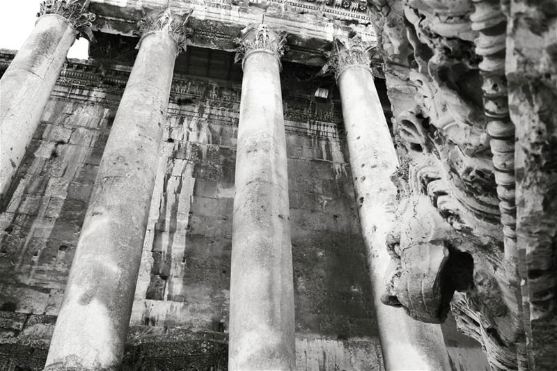 Bacchus and the Lion! temple  pillars  lion  stone   statue ... (Baalbek , Roman Temple , Lebanon)