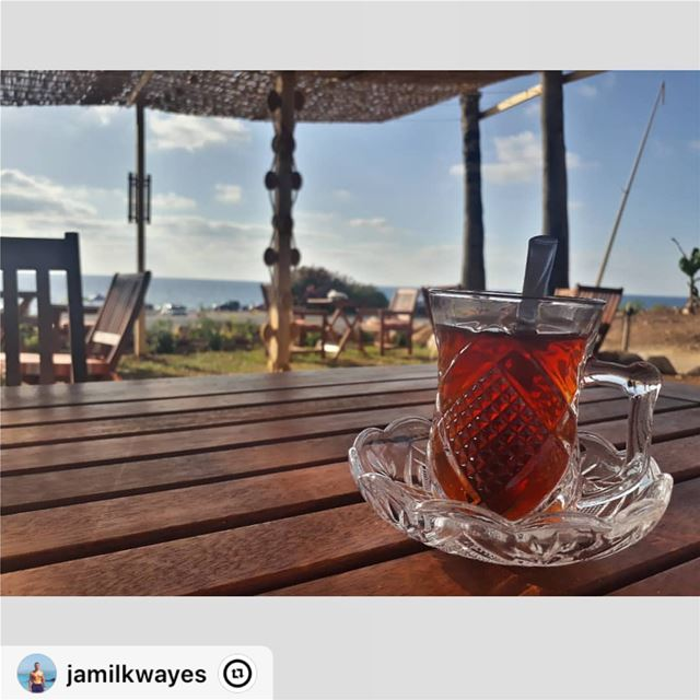 "I say let the world go to hell, but I should always have my tea.☕️ ""... (Naqoura)"