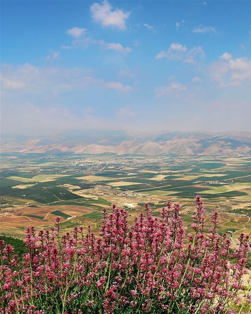 • I Miss This Place so Much !! • 💚 bekaa  valley  summer  view  outdoor ... (Barouk Mountain)