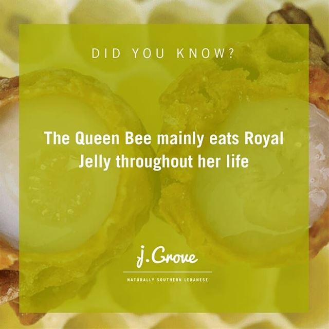 Produced by worker bees, Royal Jelly is the Queen Bee's diet throughout...