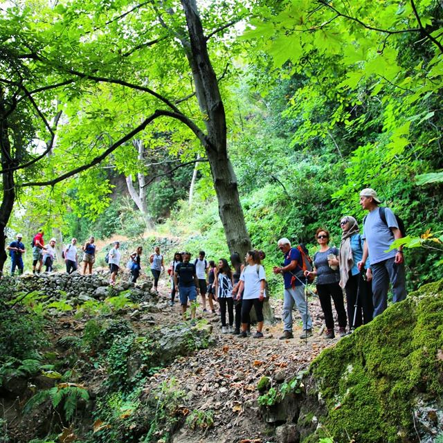 Hike with ProMax in Qannoubine Valley this Sunday, December 02. Booking +96 (Kadisha Valley)