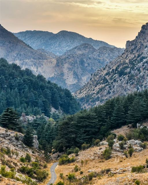 Life is like mountains. For every peak there is a valley ⛰️⛰️ lebanon ... (Arz Tannoûrîne)