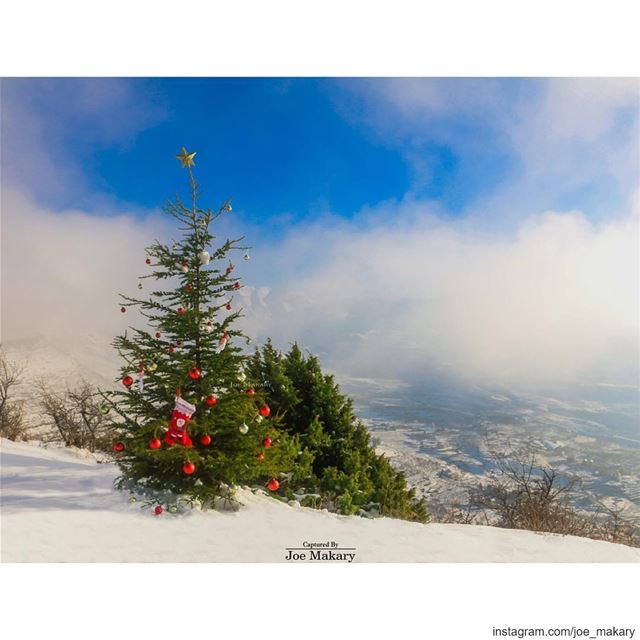 From Ehden To The World MERRY CHRISTMAS 🎄☃️❄️🎁🌟 ehden ...