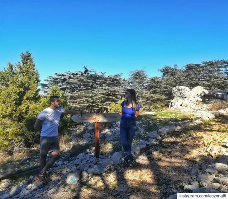 Pickup lines - chapter 2: Asking for Directions. 👈--🙂--👉... (Cedar Reserve Tannourine)