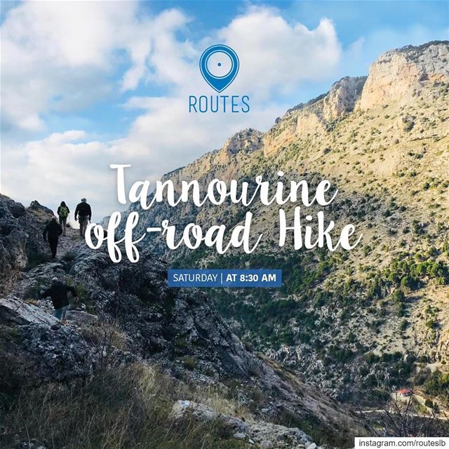 We chose Tannourine as our last village discovery of 2018, with a 15km... (Tannourine Laqlouq)