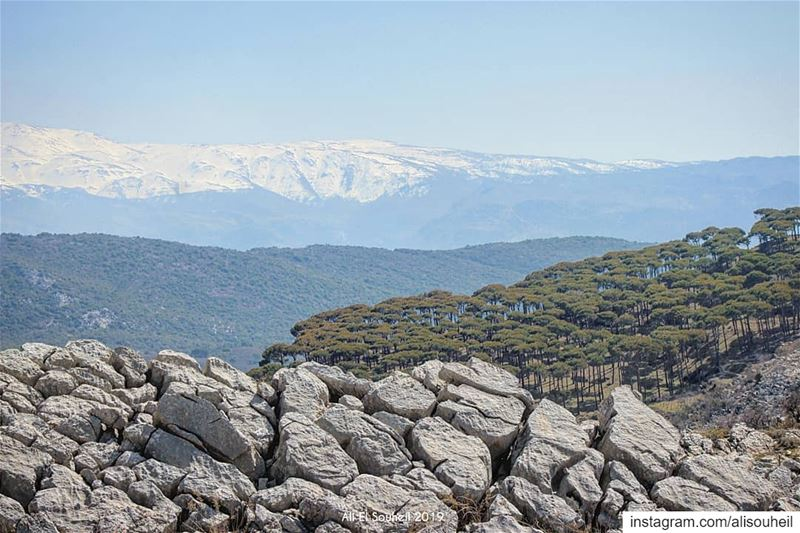 The 5 layers photo  tb  hiking  southlebanon  aramta  rocks  mountains ... (`Aramtá, Al Janub, Lebanon)