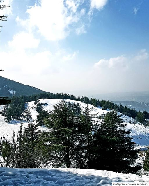 To appreciate the beauty of a snowflake, it is necessary to stand out in... (Arz el Bâroûk)