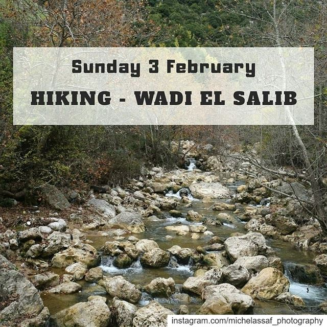 Hiking Wadi el Salib.Sunday 3 FebruaryGet ready to discover the beauty... (Wadi El Salib - Kfardebian)