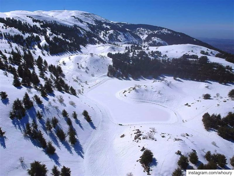 aerialphotography aerial dronefly dronestagram dronephotography drone dji... (Al Shouf Cedar Nature Reserve)