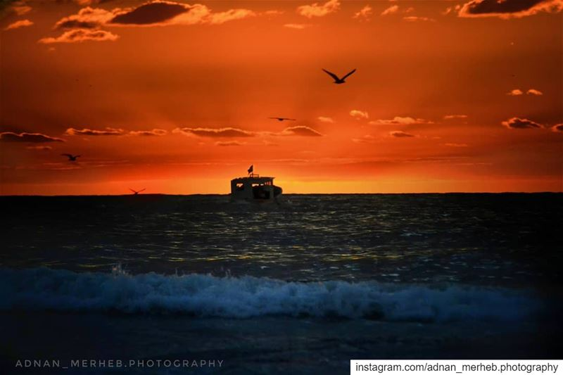 🌇 Sunset from mina❤️ sunset  sunrise  sun  TagsForLikes  TagsForLikesApp ... (كورنيش الميناء طرابلس)