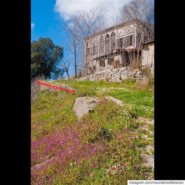 "Further apart... this abandoned ""Beik"" house in the middle of a springily... (Ajaltoun, Mont-Liban, Lebanon)"