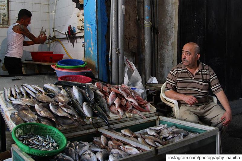 {People in their shops}   local  village  beirut  photography  Lebanon ... (Sour Tyre Lebanon.)