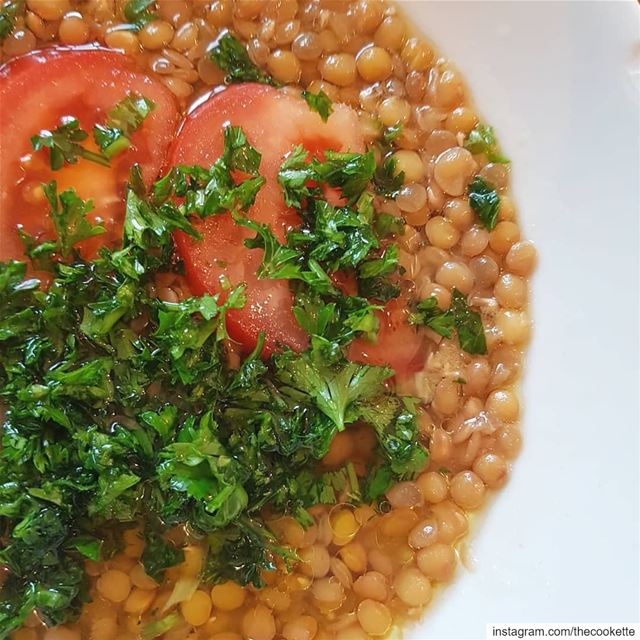 Lentil Salad aka Adas Mtabbal🌸This Vegan, healthy and very tasty... (Greater Montreal)