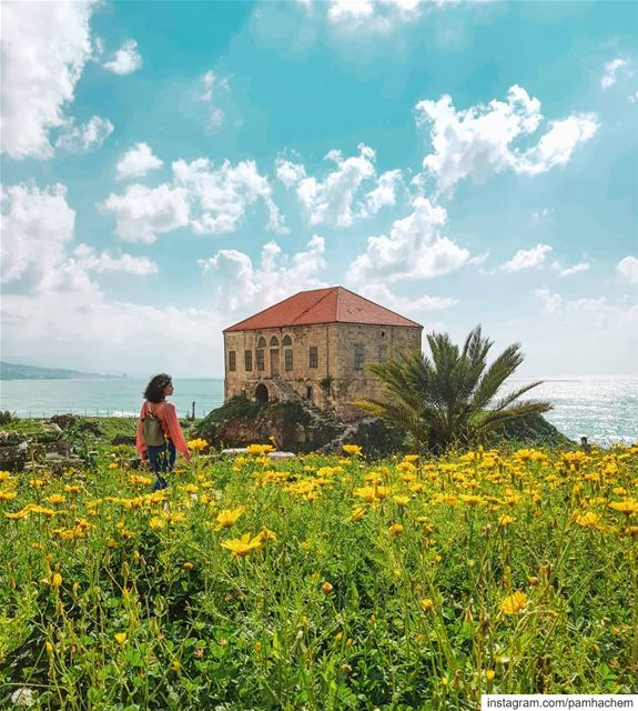 Spring makes  BYBLOS (Which is one of the oldest Phoenician cities and... (Byblos, Lebanon)