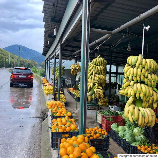 Stopping for a bit of shopping (half-price and grown a few feet away)... (Damour, Lebanon)