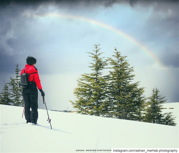 🌈 🌨 🎿  snow  winter  nature  ski  mountains  love  photography  dog ... (Bcharré, Liban-Nord, Lebanon)