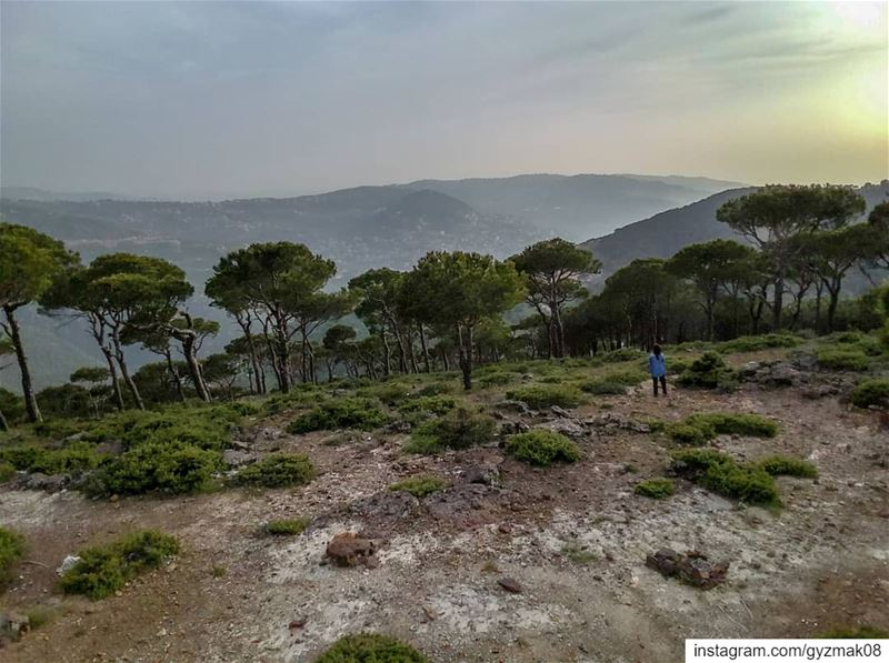 That moment when you feel so tiny in an imperial landscape. ....... (Mount Lebanon Governorate)