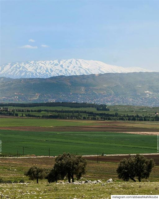 ".• "" Woke up to this view ""• Location: Bekaa Valley 
