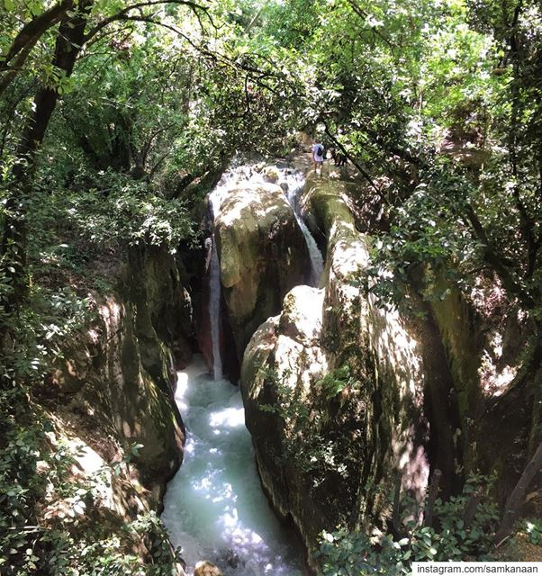 ♡ Hike for heart failure ♥  nature  hiking  adventure  outdoors ... (Chouf)
