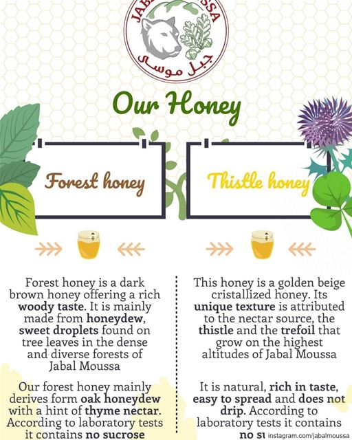 Learn more about our 2 types of Honey. Available at  JabalMoussa's... (Jabal Moussa Biosphere Reserve)