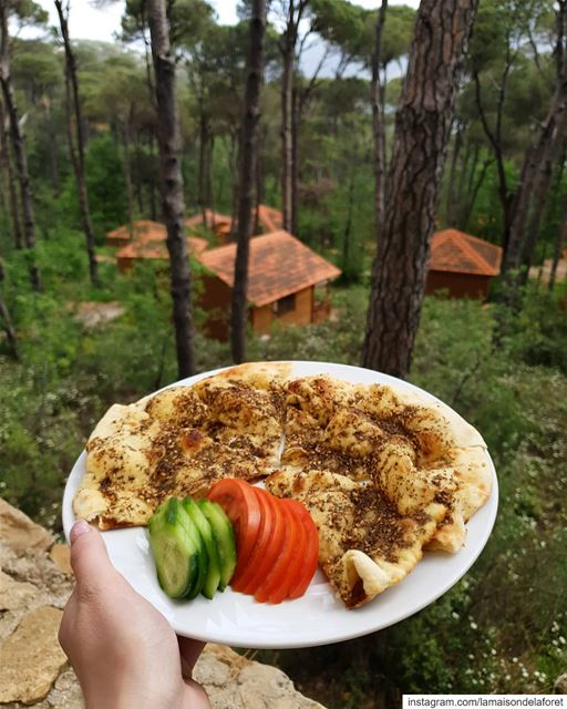 Zaatar Mankoushe and Forest view 🌳🏡 Can you ever resist? 😋...