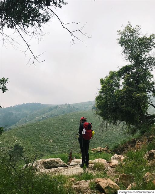 A Midsummer Day's Dream.  Lebanon  hiking..... getoutside ...
