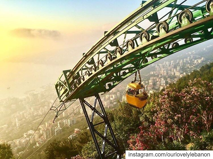 Good evening dear followers😍 From Harissa by @bohemianvagabond 😍💚 ...