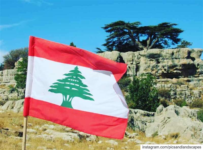 """I am from Lebanon, I am from the ground underneath my homeI am from the... (Cedar Reserve Tannourine)"