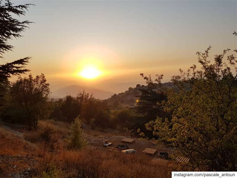 ✔Keep dreaming & chase your dreams! sun  sunset  sunsets  sunsetlover ... (Al Shouf Cedar Nature Reserve)
