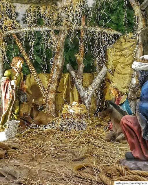 In my village, there was a huge fire last month. A Christmas crib was made...