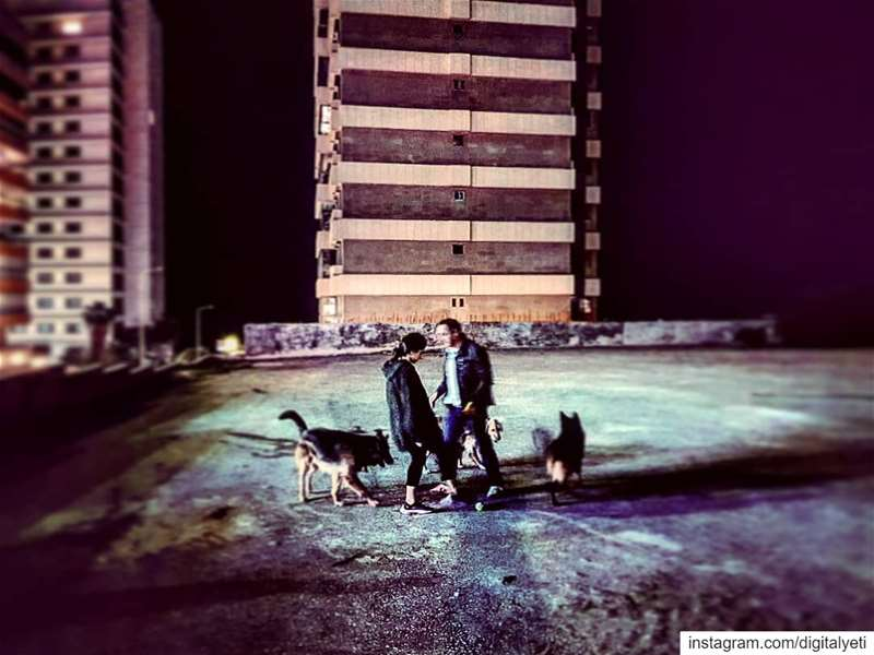 Nightwalkers....... doggydaycare  doggy  nightlife ... (Beirut, Lebanon)
