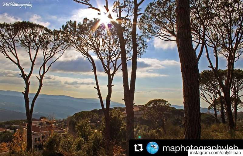 Onlyfiliban 🇱🇧 @maphotographyleb with @onlyfiliban ・・・Surrounded by... (Mar Musa, Mont-Liban, Lebanon)