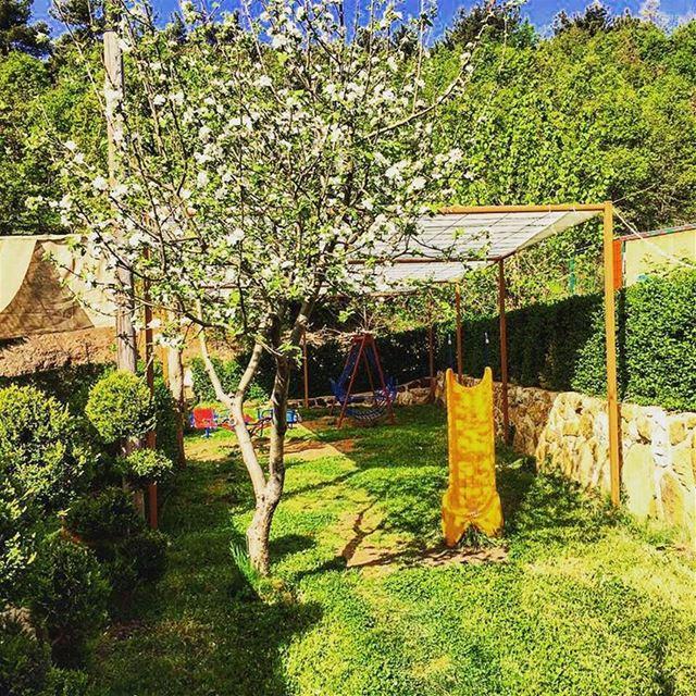Best escape 💆🏻 jalsat restaurant mayrouba faraya mountains nature...