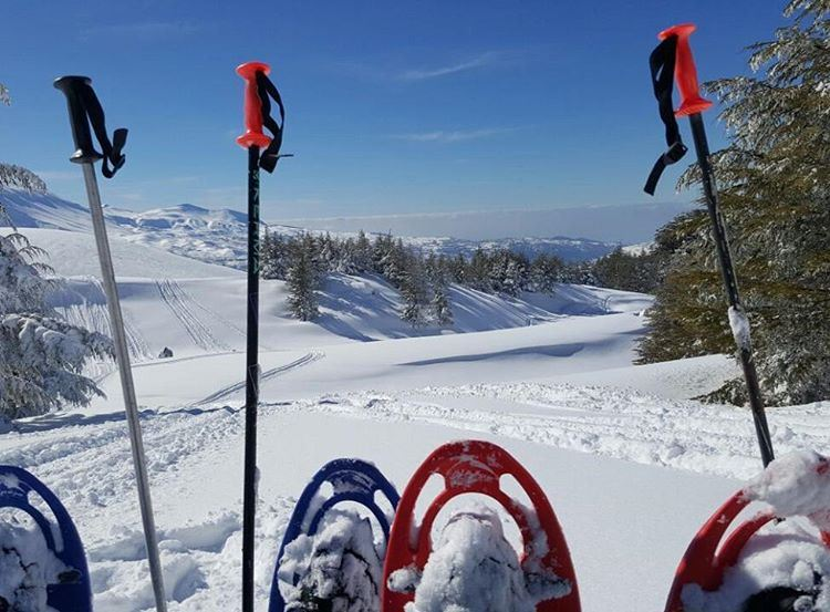 Lebanon in a picture snow  hiking  snowshoeing   amazingview ...