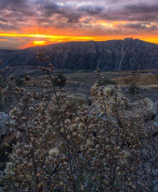 Capture the beauty of every moment & live it as if it were a blessing 🌅🙏... (El Qlaïaâ, Al Janub, Lebanon)