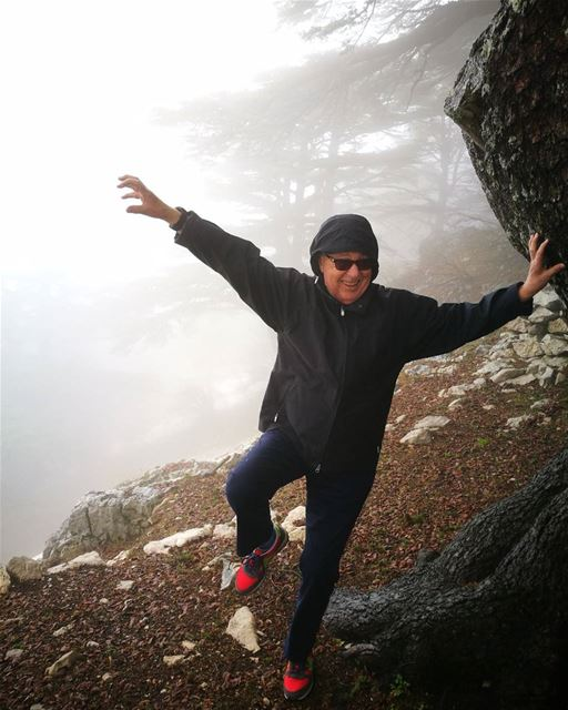 SPOOKY ME at The Cedars in the Fog of Lebanon lebanoninapicture  ... (Arz el Maasser)