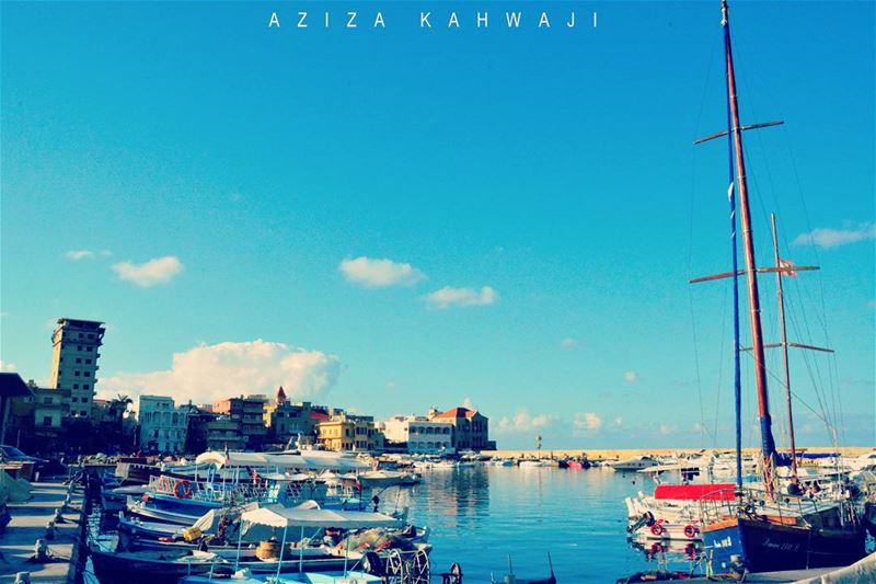 Tyr HarbourFollow your Dreams...They know their... (Tyre Fishermen Port.)