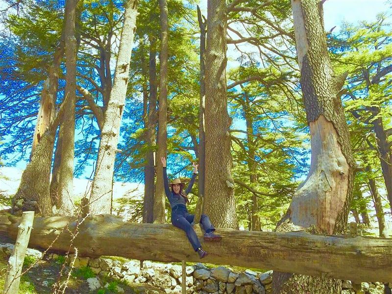 Always happy in the woods 👩🏻‍🌾  hikingculture  extremesports  lebanon ... (Cedars of God)