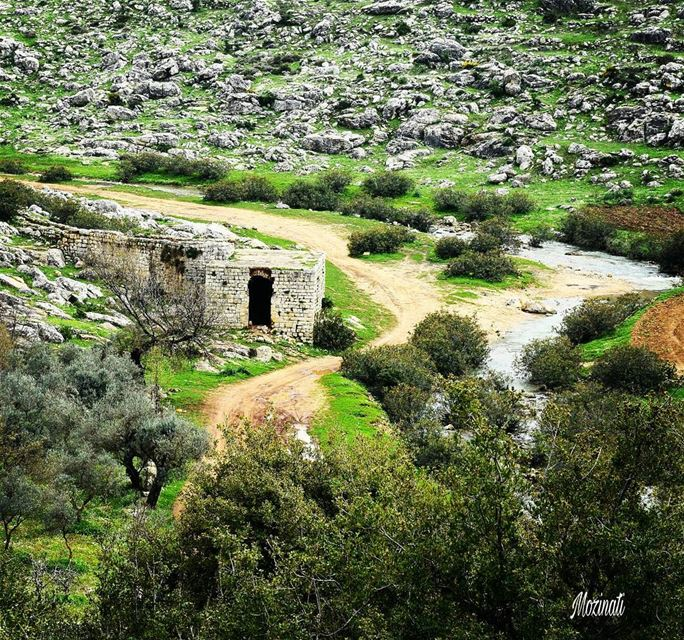 naturelove naturephotography naturelovers super_lebanon  photography... (Hoûmîne El Faouqa, Al Janub, Lebanon)