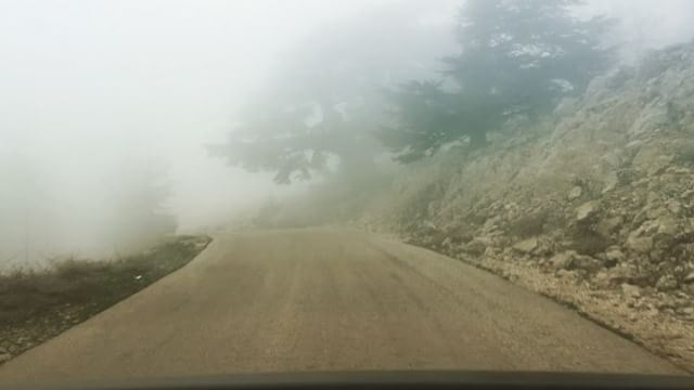 300 meters of altitude in 30 seconds. Going down from Chouf Cedar Forest-- (Barouk Cedar Forest)