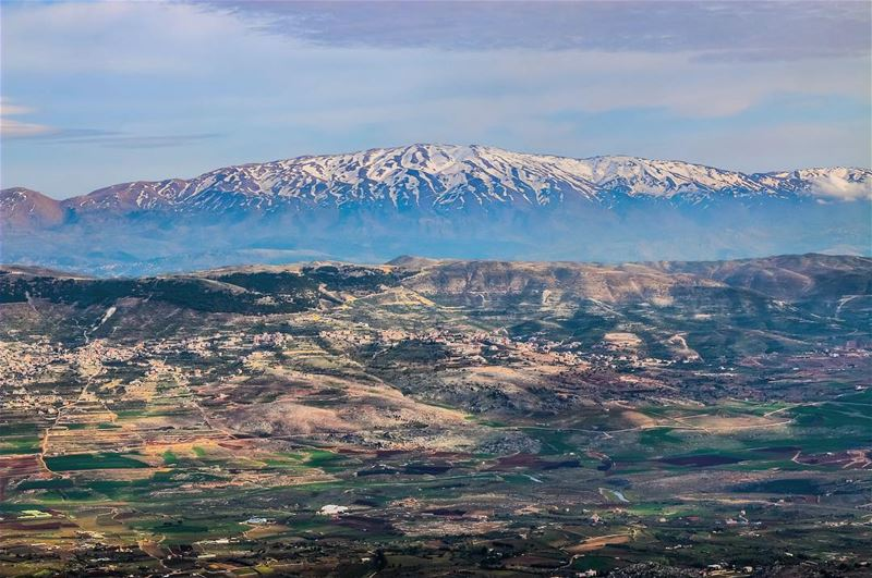 👀 Looking over the most Southern Lebanese Mountain - Mount Hermon - from... (محمية ارز الشوف)